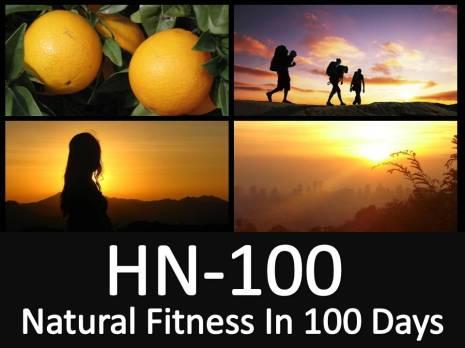NL HN 100 Snapshot