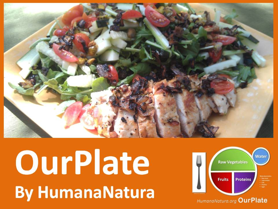 OurPlate: Optimal Eating Made Easy! (1/4)