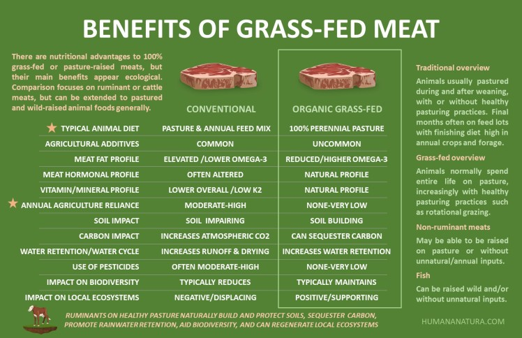 Grass Fed Meat